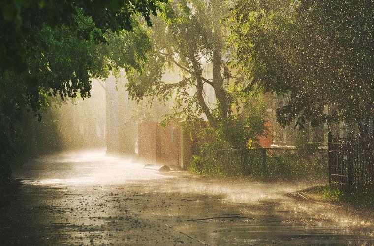 любите фото во время дождя считают