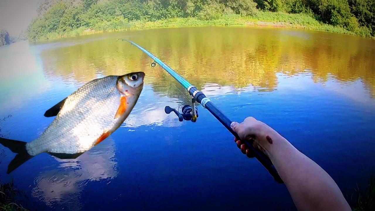Рыбалка на куриную ПЕЧЕНЬ...ЧАСТЬ 2