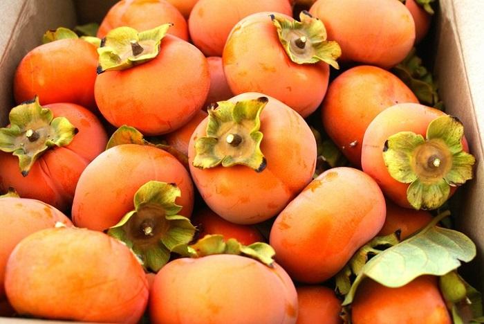 Хурма: польза оранжевого осеннего чуда