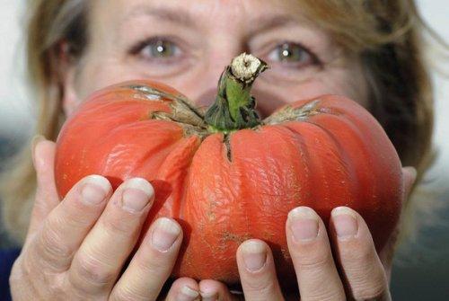 Выставка гигантских овощей (17 фото)