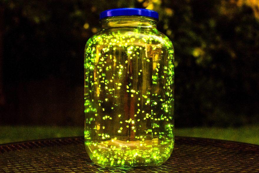 цвета картинки светлячки в банке на траве универсальности, можно