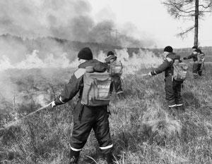 Лесные пожары породили серию мифов