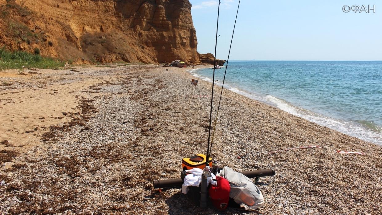 Ни одна рыба не пострадала: в Крыму прошел рыболовный фестиваль Black Sea Fishing Общество
