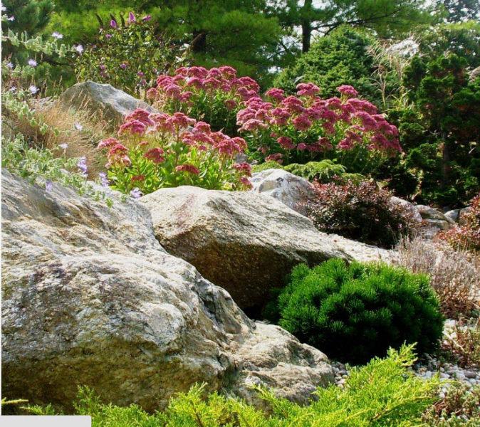 Сад-огород перед домом