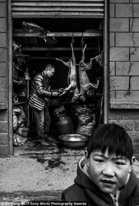 Ребенок играет около склада, где мужчина продает собачье мясо, Кайфын, Китай в мире, дети, жизнь