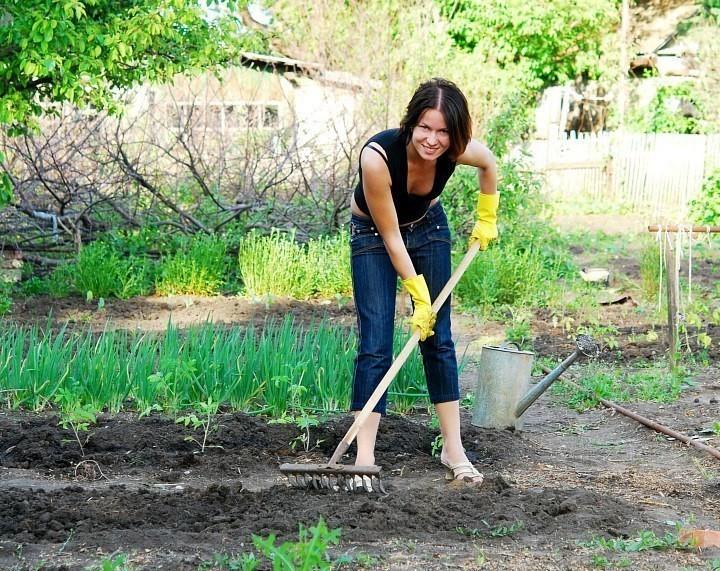 кухня фото девушка убирает в саду тети друзей