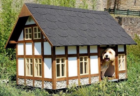 Отличные собачьи будки для дома и дачи,идеи и вдохновение