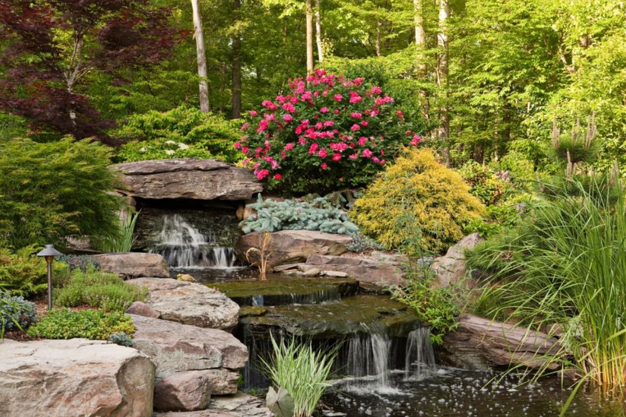 юных лет оранжереи с ручьем мостиком и фонтаном фото качество