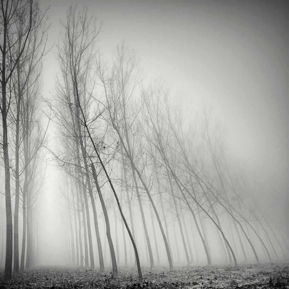 Cherno-belye-peyzazhnye-fotografii-Pera-Pellegrini 60