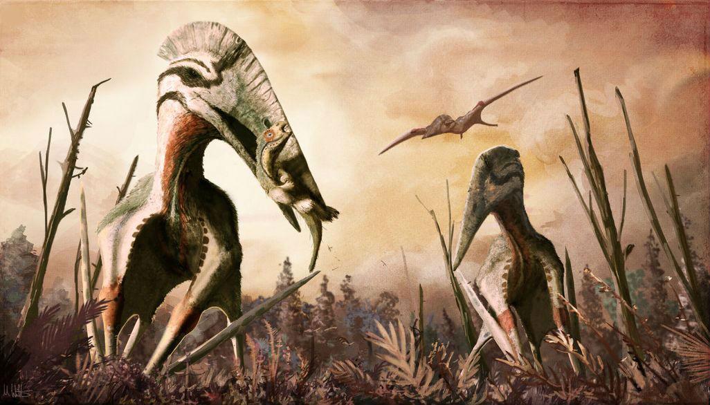 В Трансильвании найдены останки птерозавра, лакомившегося динозаврами размером с лошадь