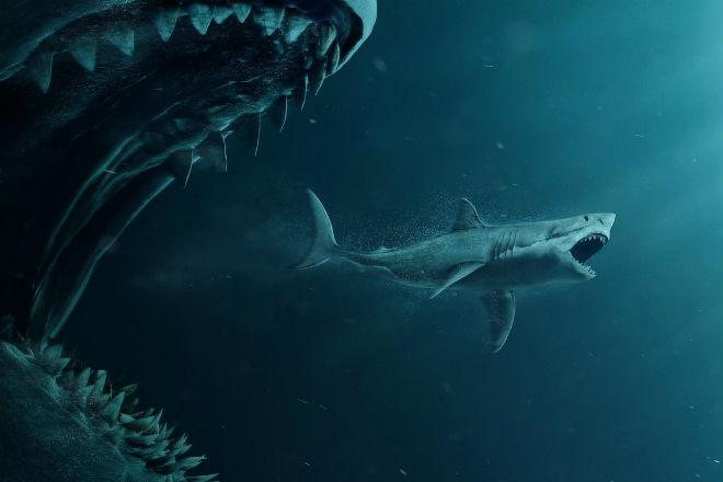 5 видео от рыбаков и ученых, когда мегалодон мог быть снят на камеру