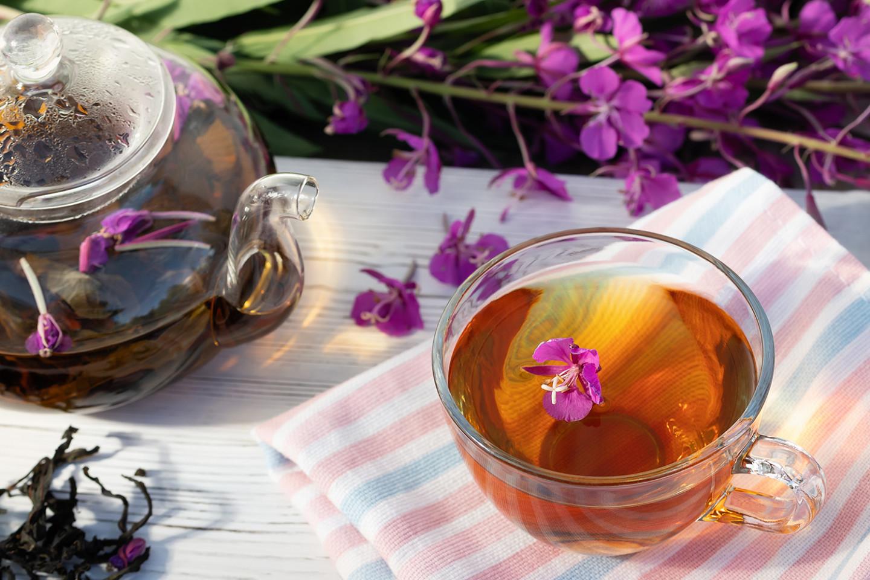 Иван-чай: польза и вред, советы врача здоровье,лекарственные растения,польза и вред
