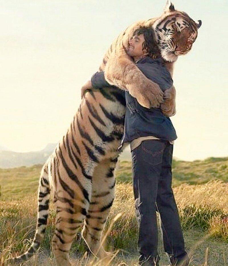 Картинки по запроÑу abrazo de tigre
