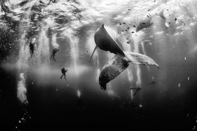 Журнал National Geographic объявил победителей фотоконкурса Traveler Photo Contest 2015