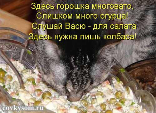 Как укормителен в России Нов…
