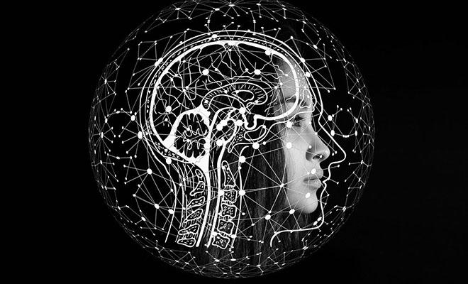 Психологи придумали лучший способ запомнить много фактов и терминов: нужно сочинить про них историю Культура