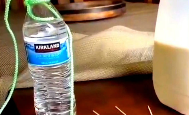 Бутылка с водой держится только на зубочистке: физика рычага в действии Культура