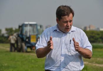 Зависимость от импорта по семенному картофелю у России около 80%
