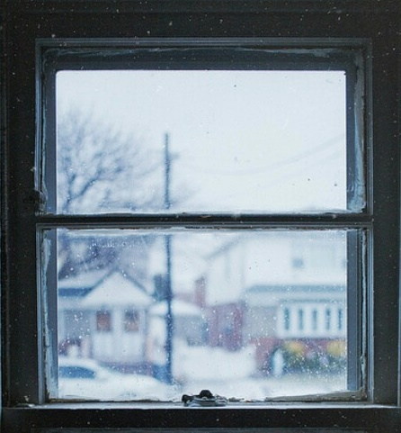Инстаграм недели: новогодние окна Новосибирска