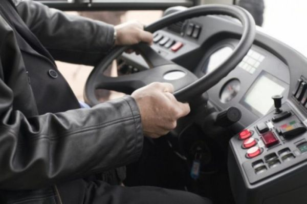 Послушный водитель: забавный случай
