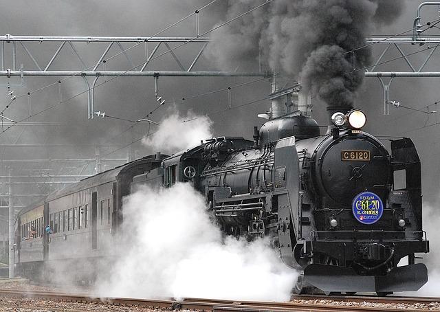 Как хитрый мужичок решил себе в поезде место освободить