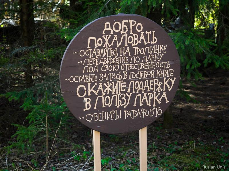 Сумасшедший лес в Финляндии путешествия, факты, фото