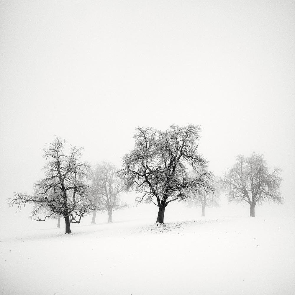 Cherno-belye-peyzazhnye-fotografii-Pera-Pellegrini 14