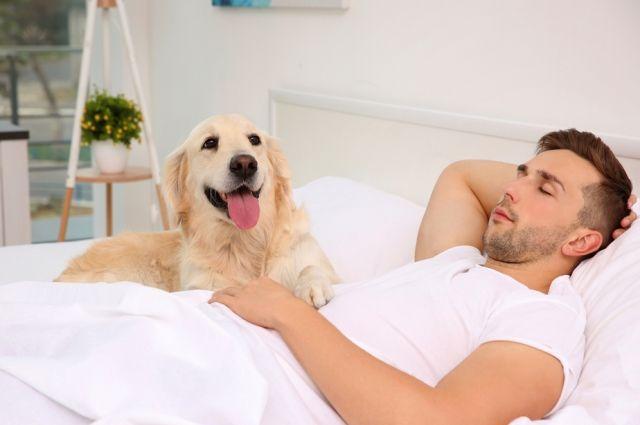 Сонный расчет. Как спать правильно, чтобы здоровье не пошатнулось