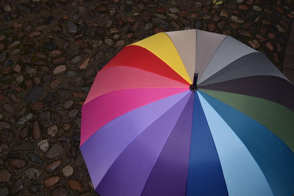 Инфографика: как правильно выбрать зонт