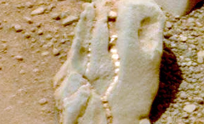 Камера марсохода сняла на Марсе объект, похожий на окаменевшего динозавра Культура