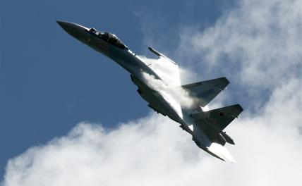 Русская «пальма-масляная мафия» сорвала поставку Су-35 в Индонезию