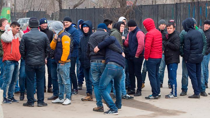 Трагедия с продолжением: к чему ведет всесилие этнических диаспор россия