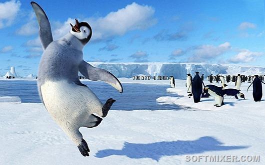 Пингвины - это ласточки, кот…