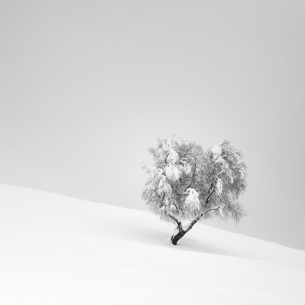 Cherno-belye-peyzazhnye-fotografii-Pera-Pellegrini 0-3