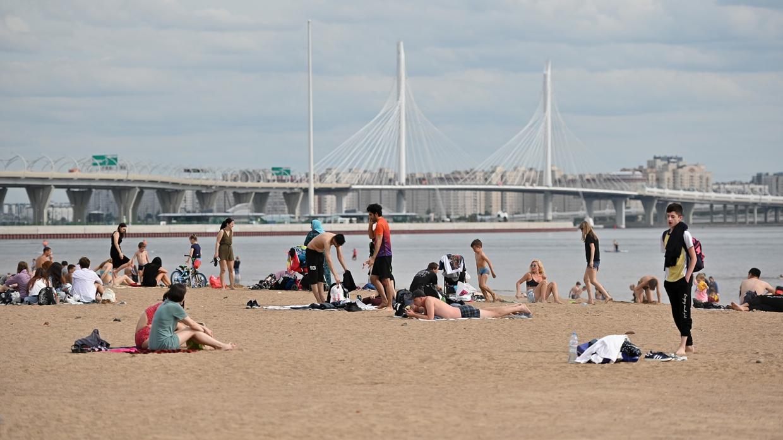 Можно ли утолить жажду алкоголем и спастись от жары в Финском заливе, объяснила врач Общество