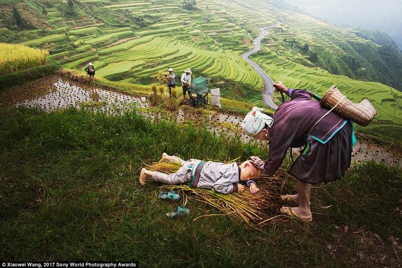 Китайская провинция Гуйчжоу. Родители этого мальчика убирают урожай в поле, а его 90-летняя бабушка остается с ним. На фото редкий момент проявления нежности в мире, дети, жизнь