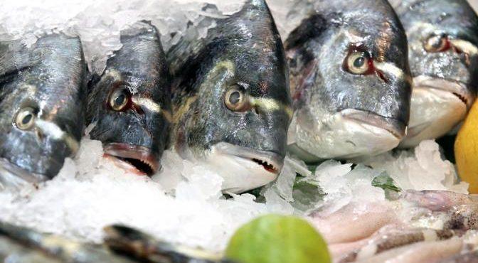 Нас кормят смертельно опасной рыбой?