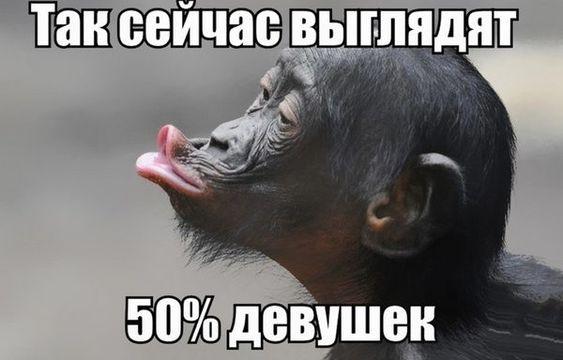 Народный юмор)