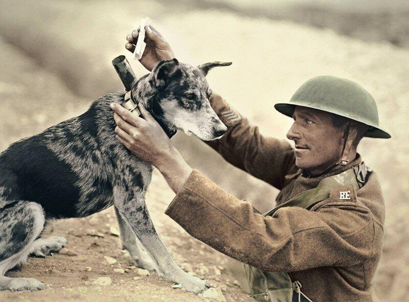 8. Солдат отправляет сообщение во время Первой мировой интересно, исторические фото, история, ностальгия, фото