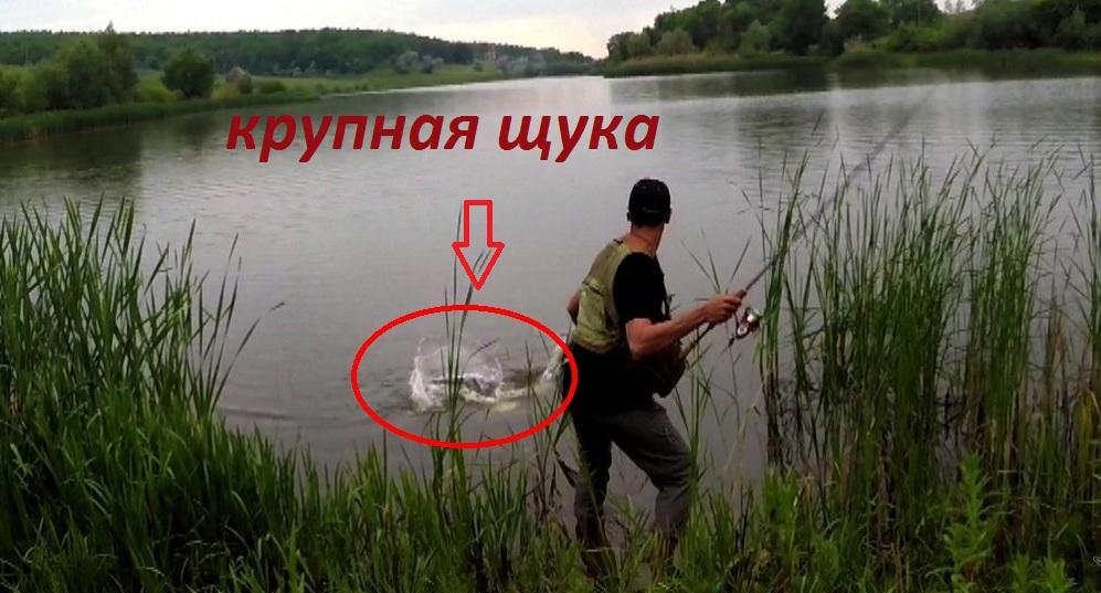Ловля крупной щуки! Pike fishing!