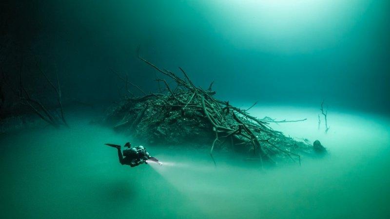 Даже самые привычные вещи в океане становятся необычными интересное, мировой океан, океан, факты