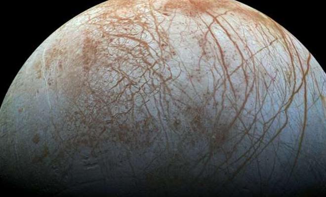 Ученые рассказали, как может выглядеть подводная жизнь на спутнике Юпитера Культура