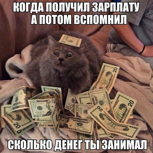 Прикольные картинки с надписями про зарплату и деньги
