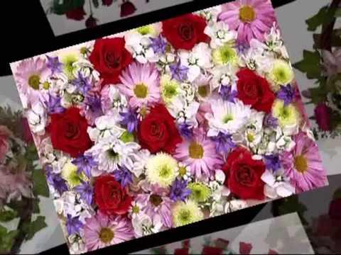 Эти цветы вам...