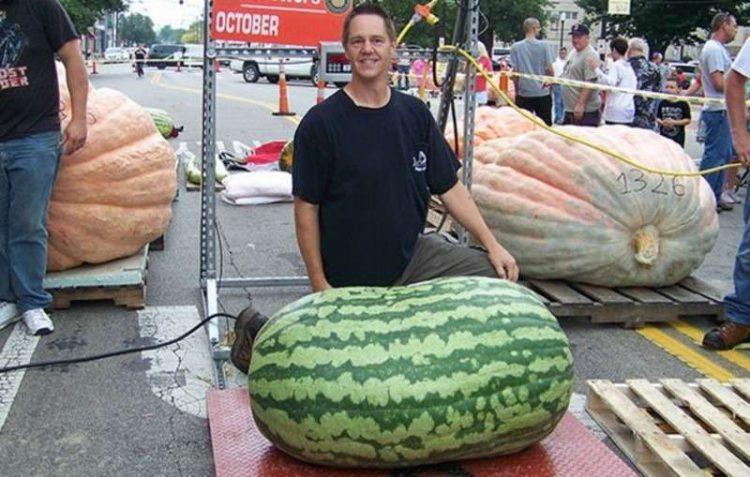 Самый большой арбуз в мире