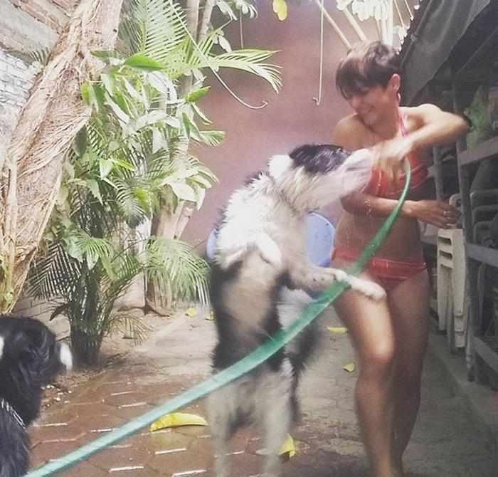 Ура! Банный день! банный день, ванна, животные, купание, шок