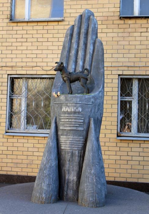 Памятники животным, на которых проводились опыты и эксперименты