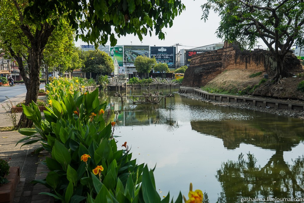 Чиангмай – город-разочарование