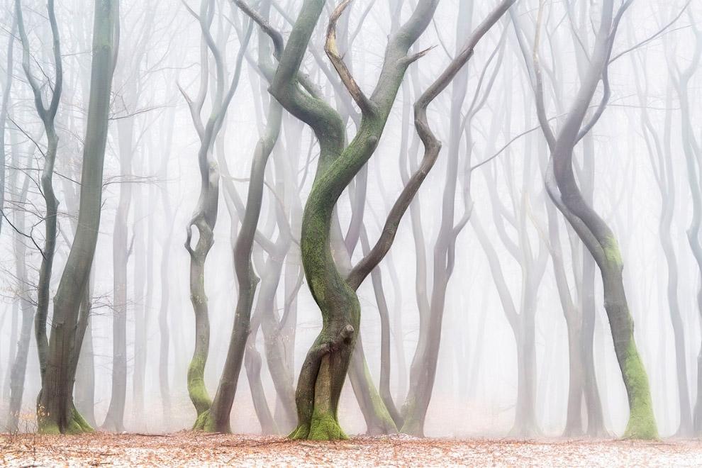 Мастера пейзажной фотографии