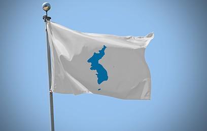 Спортсмены КНДР и Южной Кореи пройдут под одним флагом на ОИ